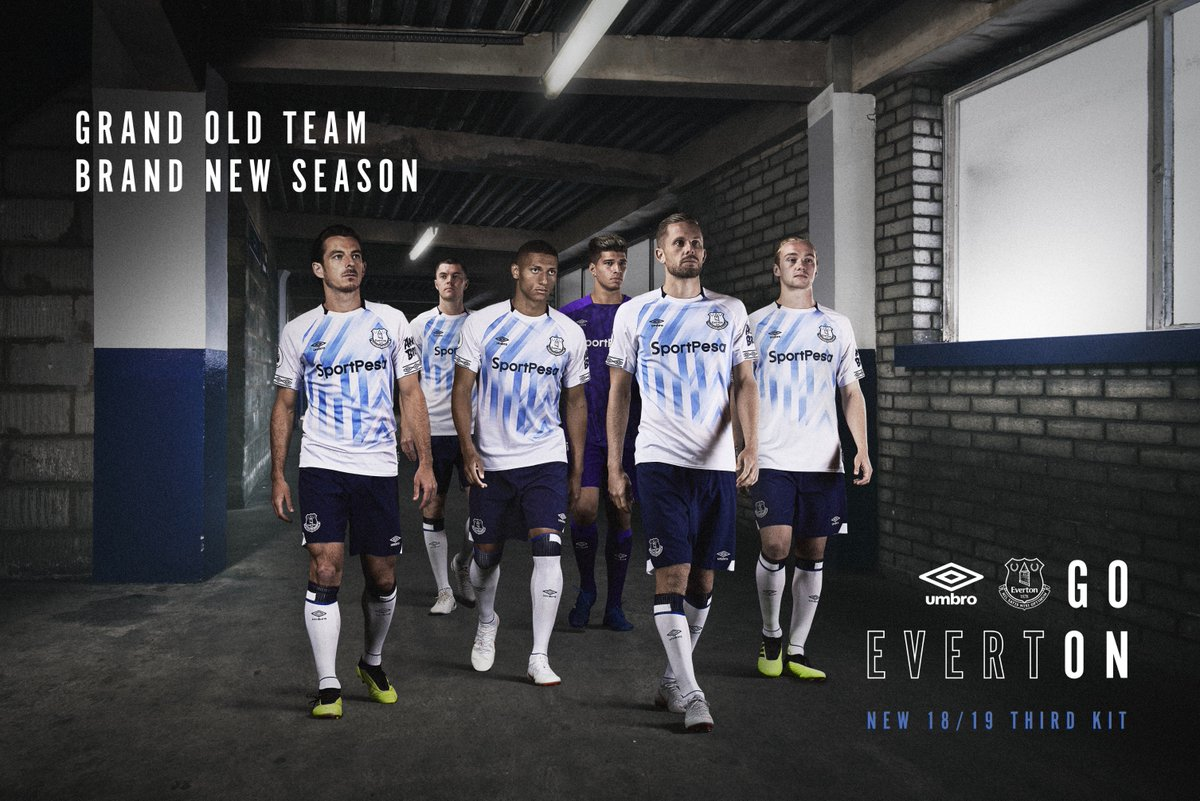 Everton 2018-19 Umbro Third Kit